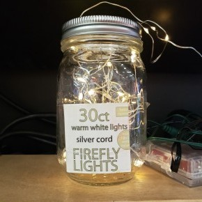 Warm 30 ct Firefly Lights,silver cord with remote