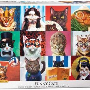 Cat Portraits by Lucia Heffernan