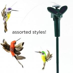 Garden Solar Hummingbird