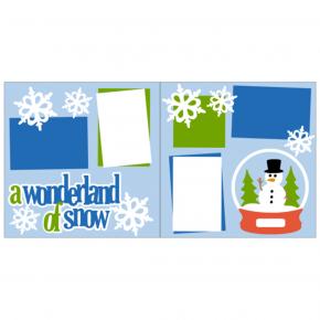 A Wonderland of Snow