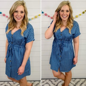 The Chelsea Button Down Dress