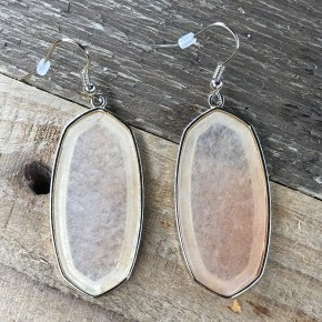 Stone Statement Dangle Earrings