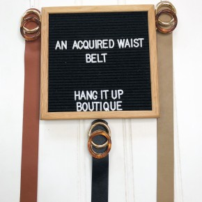 An Acquired Waist Belt- 3 Colors!