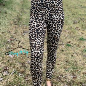 Wild Hearted Leopard Leggings
