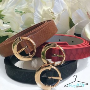 Bright Outlook Belt Set- Brown, Red, Black (Scales)
