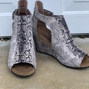 Black Snakeskin Sunburst Shoes