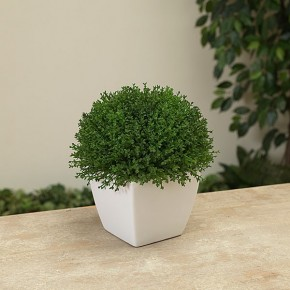 """7.25""""L Potted Artificial Green Foliage"""