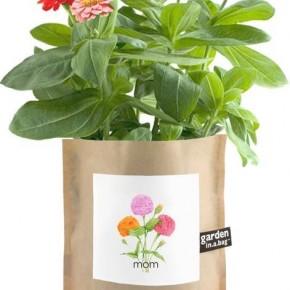 Garden in a Bag Mom