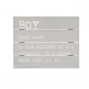 Boy Definition Pallet Sign