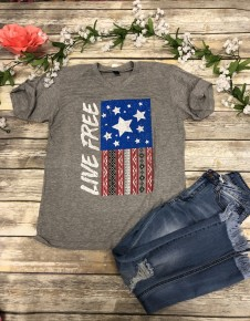 Let Freedom Ring Graphic Tee In Light Gray Sizes 4-12