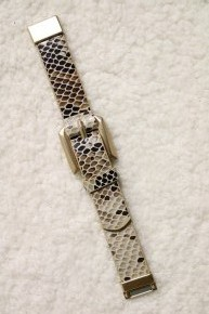All The Time Magnetic Snake Skin Buckle Bracelet