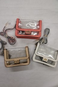 A Wonderful Time Clear Gameday Bag In Multiple Colors