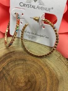 Multi Color Hoop Earrings With Multi Color  Gems