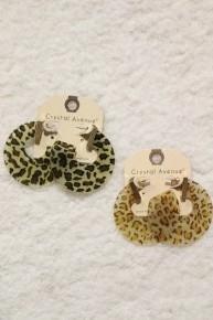 Step It Up Clear Leopard Hoop Earrings In Multiple Colors