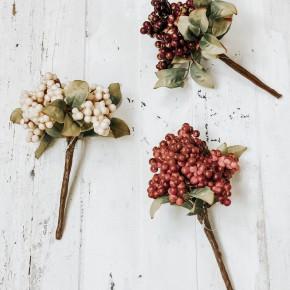 Fall Berry Pick