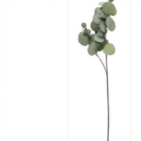 Tall Eucalyptus Spray