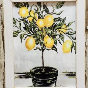 Lemon Tree Frame