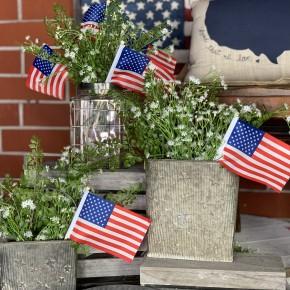 American Flag pk of 6