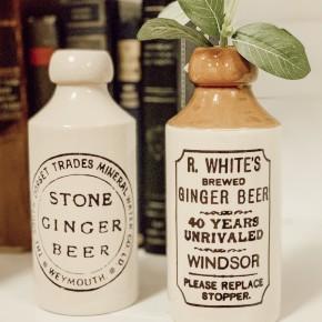Assorted Ginger Beer Bottle