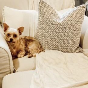 Beige & White Woven Pillow