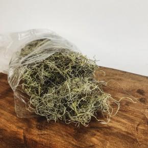 Green Spanish Moss Bag