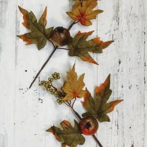 Pomegranate Berries Pick