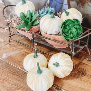 Small White Pumpkin Set of 6