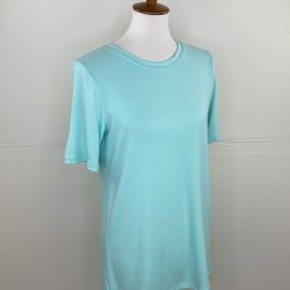The New Classic Crewneck Tee in Blue Mint