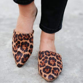 Oh My Lucy Mules, Leopard