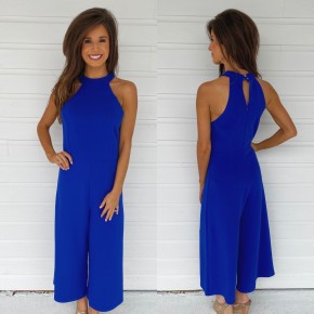 One Of Kind Royal Blue Jumpsuit