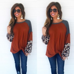 Rust Leopard Sleeve Top