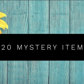 MYSTERY ITEM- TOPS!?!? Receive a Top or Graphic Tee in the size you select!
