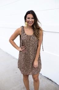 Seek & Find Dress