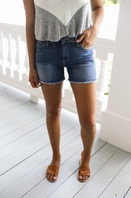 Above The Others Shorts