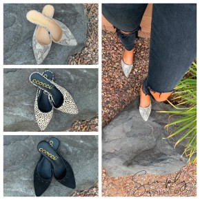 CCOCCI- Point toe flats with stud detail