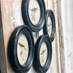 Round Rustic Bird Frame (Black)