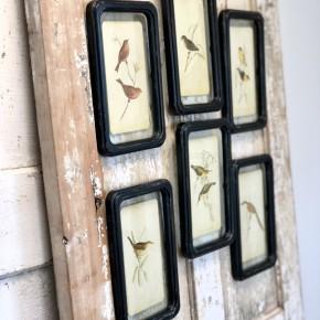 Assorted Floating Paper Bird Frame (set of 2)
