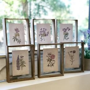 Botanical Assorted Frames