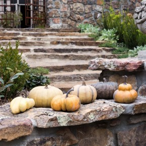 Farmhouse French Pumpkin, Pair