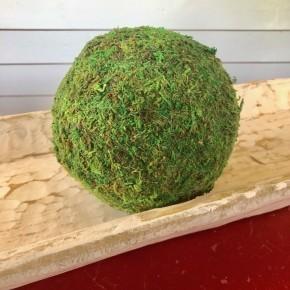 "Large Moss Balls - Set of 3 (6"")"