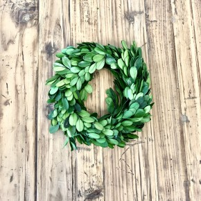 "6"" Boxwood wreath (No Ribbon)"