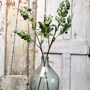 "36"" Long Olive Branch"