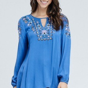 The Blue Embroidered Top