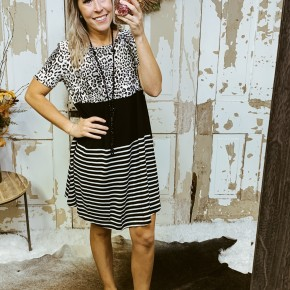 Color Block Cheetah Striped Dress