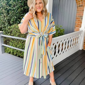 'The Stripe is Right' Dress