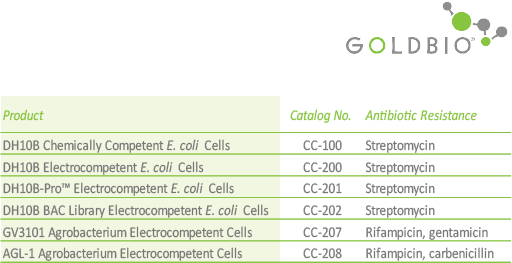 Competent Cells