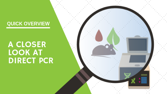 Direct PCR Quick Overview