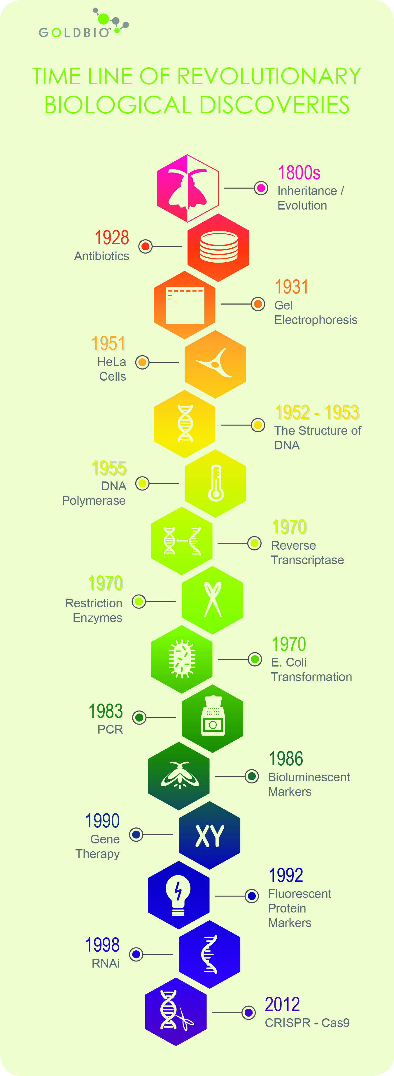 15 Great biological discoveries that revolutionized life science, Inheritance, Evolution, Antibiotics, Gel Electrophoresis, HeLa Cells, DNA, DNA Polymerase, Reverse transcriptase, Restriction enzymes, E. coli transformation, PCR, Bioluminescent markers, Gene Therapy, Fluorescent protein markers, RNAi, CRISPR-Cas9