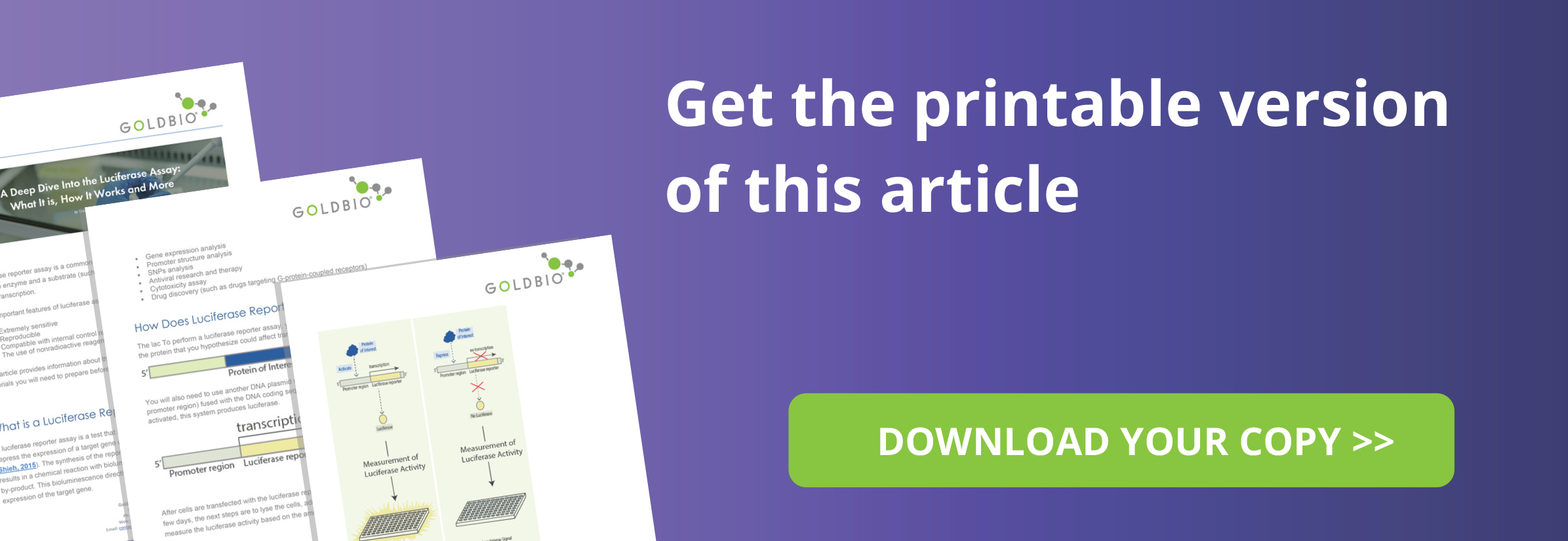 Illustrative guide to how the luciferase assay works - free downloadable article