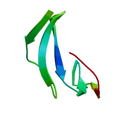 Image thumbnail for Epidermal Growth Factor (EGF), Murine